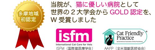 当院が、猫に優しい病院としてGOLD認定を、世界の2大学会からW受賞しました