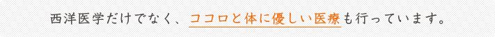 holistic_banner02